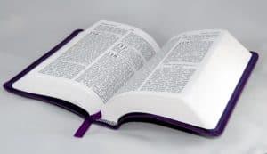 Bela Imagem espelhando o Salmo 91